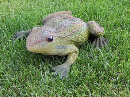 Frosch Kröte Dekofigur für Garten und Gartenteich - Vorschau 2