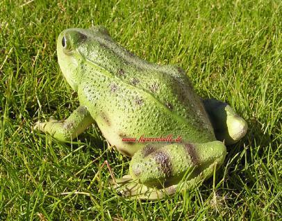 Frosch Kröte Figur Statue Skulptur lebensecht - Vorschau 3