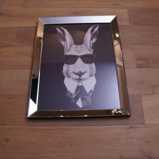 Hase mit Sonnenbrille Wandbild Spiegelrahmen Fotografie