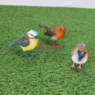 tatue Deko Garten Vogel Vögel Meise Rotkehlchen Spatz Figur lebensecht Sing neu