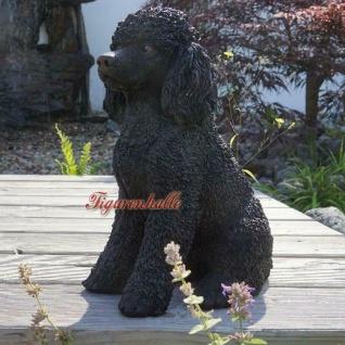 Pudel Königspudel schwarz lebensecht Figur Statue Skulptur