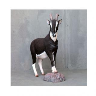 Ziege schwarz weiß hochwertig Dekofigur Statue Skulptur Gartenfigur