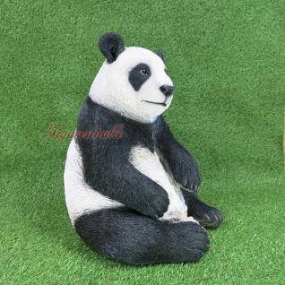 Pandabär Figur Statue Skulptur Deko Gartenfigur lebensecht Deko Panda Zoo Bär - Vorschau 3
