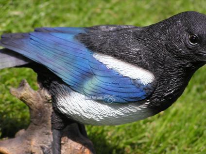 Elster Vogel Figur Dekofigur Heimischer Waldvogel - Vorschau 5