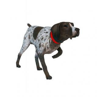 Moritz Deutsch Kurzhaar Vorstehhund Hund Jagdhund Hunde Figur Statue Skulptur Gartenfigur