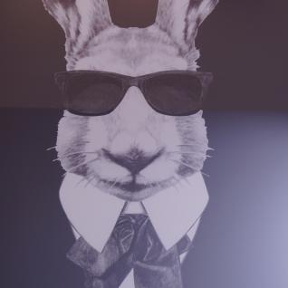 Hase mit Sonnenbrille Wandbild Spiegelrahmen Fotografie - Vorschau 2