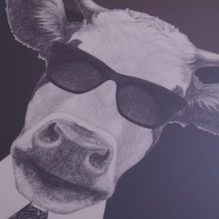 Kuh mit Sonnenbrille Wandbild Spiegelrahmen Fotografie - Vorschau 2