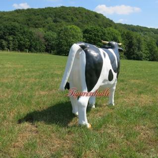 Kuh lebensgroß Figur Statue Skulptur GFK Werbefigur rechts schauend - Vorschau 4