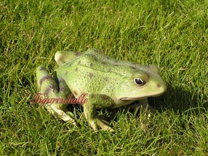 Frosch Kröte Figur Statue Skulptur lebensecht - Vorschau 4