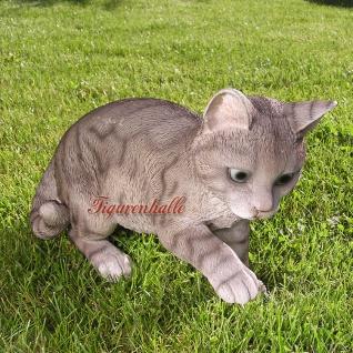 Grau Tiger Katze gestromt als Figur Kaufen