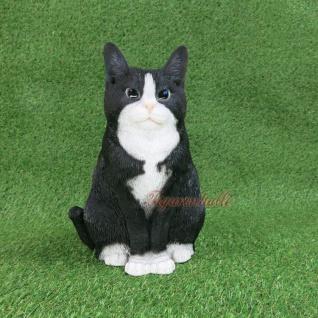 American Shorthair Charakter Katze Figur Statue Skulptur Deko schwarz weiß Moritz Gartenfigur