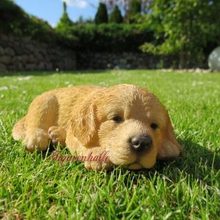 Golden Retriever Welpe liegend Hund Hundefigur Figur Skulptur Dekoration Tier