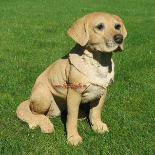 Labrador Retriever Gartenfigur Fan Figur Deko Dekoration Hund - Vorschau 2