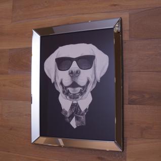 Hund mit Sonnenbrille Wandbild Spiegelrahmen Fotografie