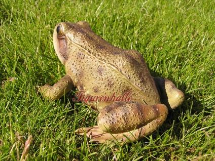 Frosch Kröte braun Figur Statue Skulptur lebensecht - Vorschau 3