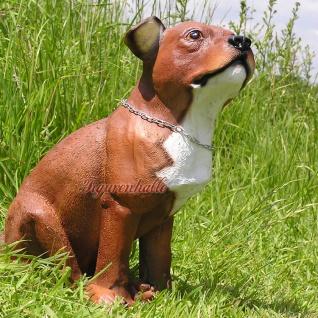 Pit Bull Terrier Tierfigur Hundefigur Figur Deko Fan