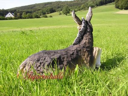 Esel Maultier Dekofigur Gartenfigur Figur - Vorschau 4