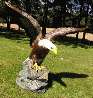 Adler Seeadler Weißkopfseeadler Figur Dekofigur