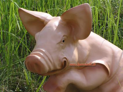 Schwein Pfote hoch - Vorschau 2
