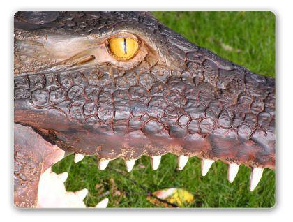 Krokodil-Kopf Kroko-Kopf Figur Deko Wanddeko - Vorschau 2