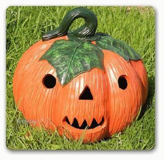 Herbst deko g nstig sicher kaufen bei yatego - Halloween deko garten ...