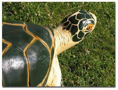Wasserschildkröte Figur Schildkröte Dekofigur - Vorschau 2