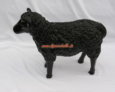 Schwarz Schaf Designer schwarzes Schäfchen - Vorschau 5