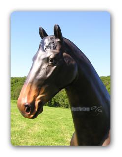 Pferd Werbefigur Schwarz Dekofigur Reiterhof - Vorschau 4