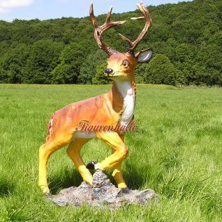 Hirsch Dekofigur Rot-Wild Statue Figur Rehbock
