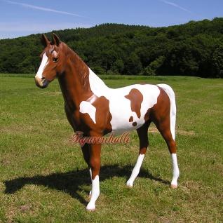 Pferd Westernpferd Quarter horses Figur Lebensgroß Statue geflecktes