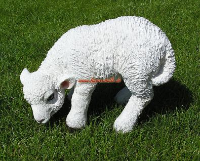 Lamm Schaf Schäfchen Figur Statue Skulptur