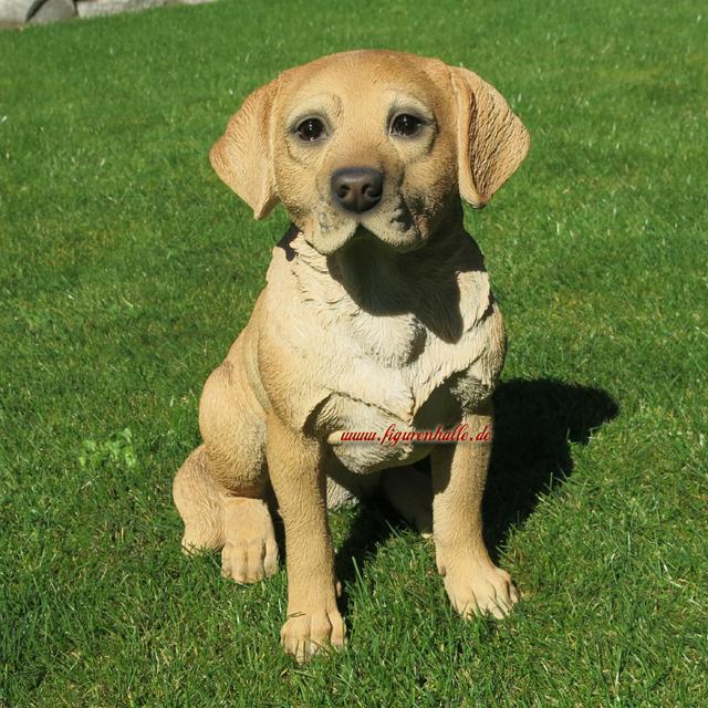 Hund Deko.Labrador Retriever Gartenfigur Fan Figur Deko Dekoration Hund