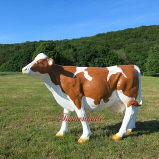 Braun weiß Kuh ohne Hörner Horn Figur lebensgroß lebensech Statue Werbefigur