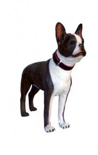 Boston Terrier Hund Hunde Figur Statue Skulptur Gartenfigur