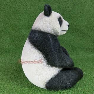 Pandabär Figur Statue Skulptur Deko Gartenfigur lebensecht Deko Panda Zoo Bär - Vorschau 4