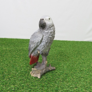 Graupapagei Papagei Vogel lebensecht Aufstellfigur Figur Statue Skulptur Deko