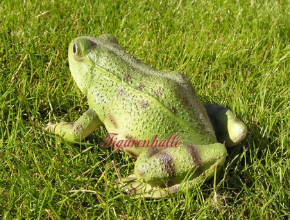 Frosch Kröte Figur Statue Skulptur lebensecht - Vorschau 2