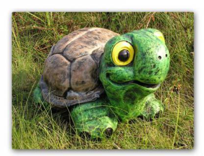 Schildkröte Gartenfigur Teich Dekoration Garten