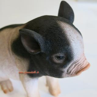 Zwergschwein Schwein Deko-Figur oder Werbefigur - Vorschau 4