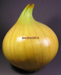 Riesen Zwiebel als Figur und Dekoration für Ihren Obstladen oder Lebensmitel Gastronomie.