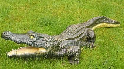 Krokodil kroko aligator figur dekofigur garten kaufen for Dekofiguren garten