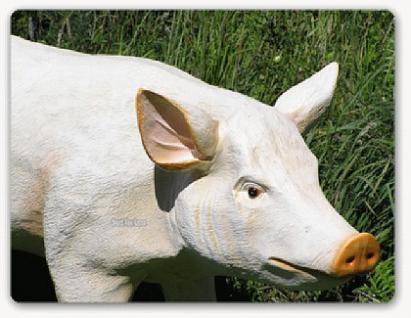 Schwein Lebensgroß Figur Statue Dekofigur Bauer - Vorschau 1