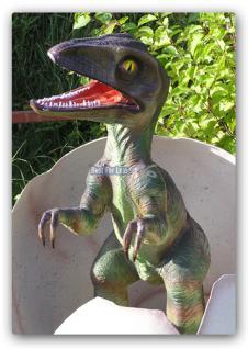 Tyrannosaurus Rex Baby im Ei Figur Statue Dino - Vorschau 3