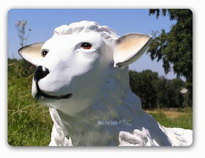 Schaf liegend Figur Gartenfigur Aufstellfigur Deko - Vorschau 2