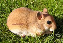 Haustier Hamster Figur Statue Nager