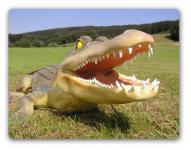 Alligator Dekofigur oder Aufstellfigur Skulptur
