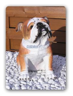 Englische Bulldogge Dekofigur Figur Statue Deko