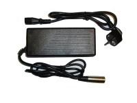 Reiseladegerät für 36V LFP / LiFe / LiFePo4 Akkus 1.5A 4AH-15AH