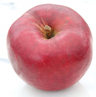 Apfelbaum Himbeerapfel Lübben 60-80cm - knackig und rot