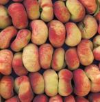 Plattpfirsich Roter Saturn 60-80cm - Prunus persica